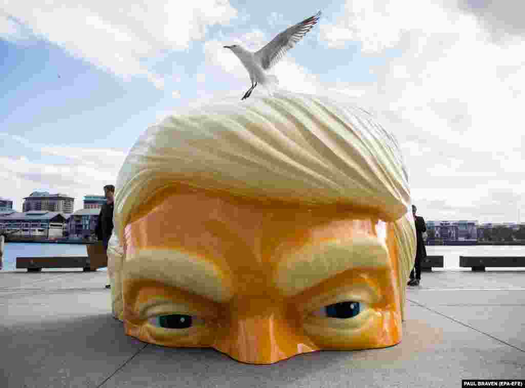 A sculpture called Helter Shelter, depicting U.S. President Donald Trump and created by artist Callum Morton, is seen as part of the Sydney Contemporary Art Fair preview at Barangaroo in Sydney, Australia. (EPA-EFE/Paul Braven)
