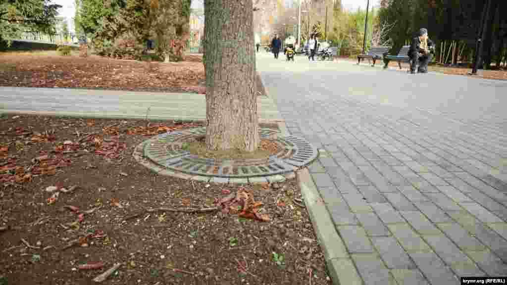 Металеві кільця навколо дерев