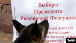За год до выборов президента в России зачищено все, что можно, считают политологи