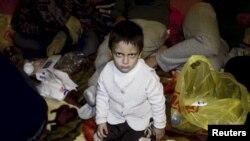 Мурмански өлкәсенең Норвегия белән чик буенда качак балалары, 2015 елның октябре