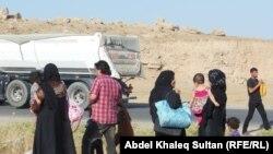 Ирактын Мосул шаарынан качып чыккандар. Кулжа (июнь) айы, 2014-жыл.
