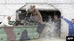 Паводка ў Польшчы нарабіла бяды.
