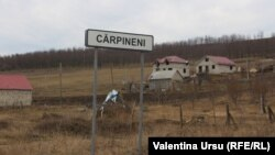 Radiografie de sat moldovean: Cărpineni