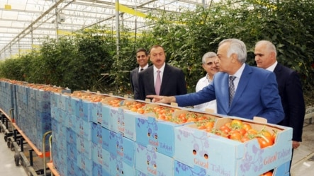 Prezident İlham Əliyev Azərsunun istixanasında, 2012