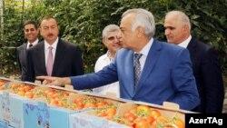 Prezident İlham Əliyev Azərsun şirkətinin Binədəki istixanasında, 2012