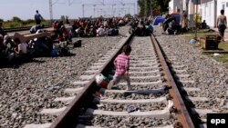 Мигранты в районе хорватского города Товарник, 17 сентября 2015 года.