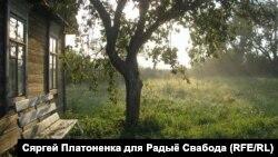 Раніца у вёсцы Старая Мыш / Аўтар Сяргей Платоненка