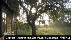 Фота дня: Раніца у вёсцы Старая Мыш. Аўтар Сяргей Платоненка