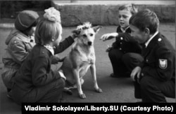 Schoolchildren playing with a dog