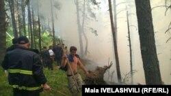 200 гектаров выгоревшего леса – печальный и, возможно, еще не конечный итог пожаров в Грузии