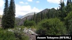 Иле-Алатауский национальный парк. Иллюстративное фото.