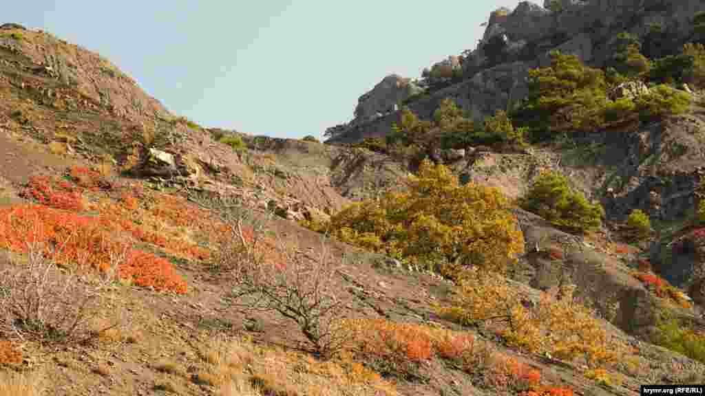 Осенний раскрас горных склонов