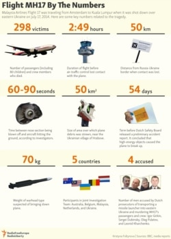 INFOGRAPHIC: Flight MH17 By The Numbers