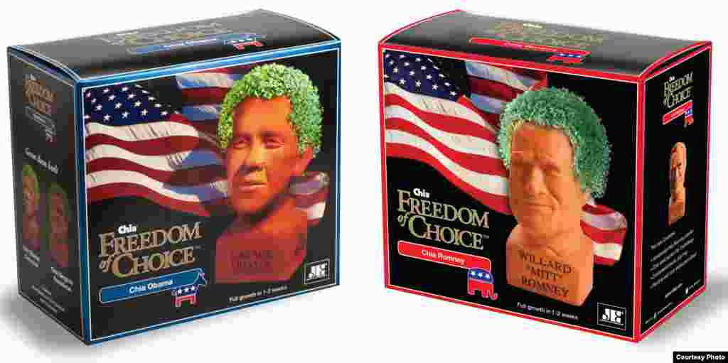 Obama and Romney Chia Pets