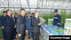 Arxiv fotosu: Vasif Talibov «Naxçıvan bağları» istixana kompleksinin açılışında.