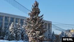 საახალწლო ნაძვის ხე, კიშინიოვი, მოლდავეთი