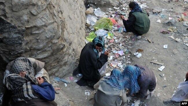 افغان معتادین