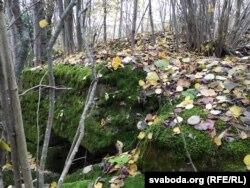 Фрагмэнты нямецкага дота ў крэўскім лесе