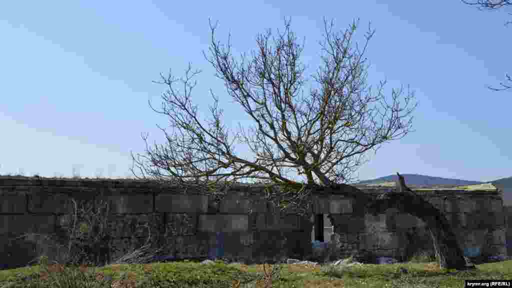 Köyniñ kenarında - sovet devri çiftlilikleriniñ yıqıntıları