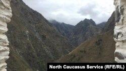 Вид на ущелье из Цой-Педе близ границы с Грузией (архивное фото)