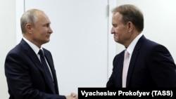 Президент России Владимир Путин (л) и один из лидеров пророссийской партии «Оппозиционная платформа – За жизнь» Виктор Медведчук, Владивосток, 5 сентября 2019 года