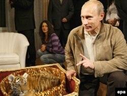 Putin öz ad günü hədiyyəsi ilə, 10 oktyabr 2008