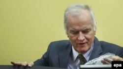 Ish-komandanti i forcave serbe të Bosnjës, Ratko Mlladiq.