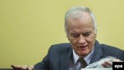 Ellis: Važnije je u predmetu Ratka Mladića da žrtve ostvare pravdu (na fotografiji: Ratko Mladić)