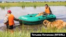 Жительница Забайкалья во время наводнения (Архивное фото)