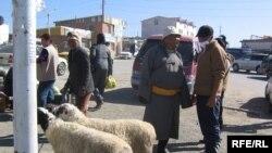 Продажа овец в пригородном районе Улан-Батора.