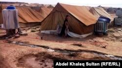 دهوك:مخيم دوميز للنازحين السوريين