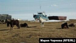 Иркутский поселок Большие Коты на берегу Байкала