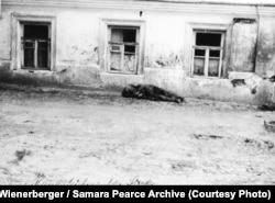 «Труп померлого з голоду на вулиці» (авторський підпис). Харків, 1933 рік. У правому верхньому куті фото можна побачити табличку із російськомовною назвою вулиці ‒ «Криничный переулок». Ця вуличка відома ще з 1870 року. Її назва походить від джерела (криниці) Свято-Пантелеймонівської церкви. Провулок був забудований переважно приватними одно-двоповерховими будинками. «Криничний провулок», довжиною лише 140 метрів, досі існує у центрі Харкова. Фото Александра Вінербергера. Публікується вперше в оригінальному вигляді. Надано власником авторських прав Самарою Пірс