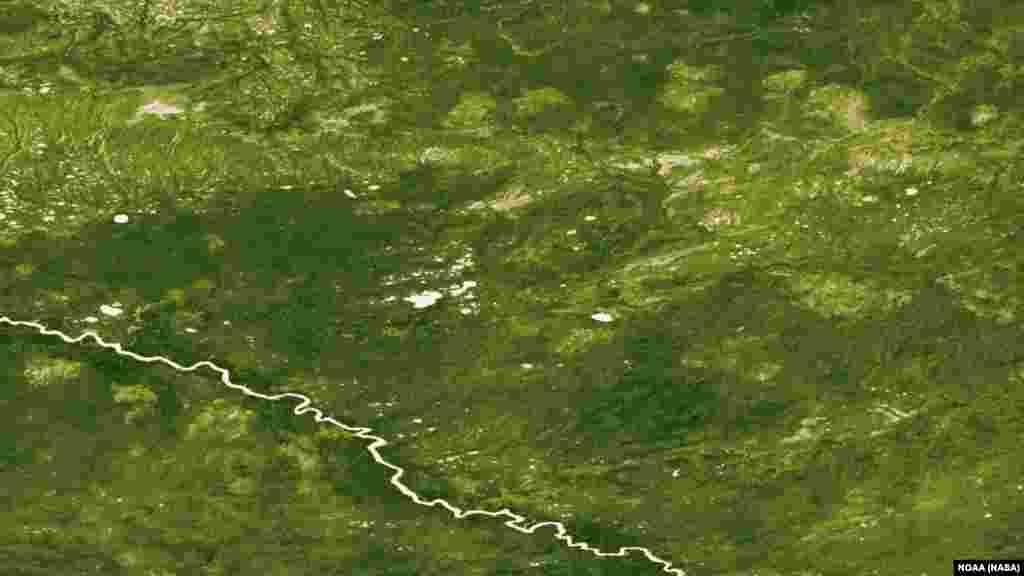ნაკლები მცენარეულობის რეგიონები რუსეთის ქალაქ ლანგეპასთან გაჩენილი მასშტაბური ტყის ხანძრის შედეგია. სურათები 2012 წლის 23-29 ივლისსაა გადაღებული.
