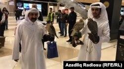 Bakı aeroportunda ərəb turistlər