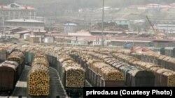 Экспорт леса, иллюстративное фото