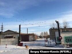 Исправительная колония в Алтайском крае