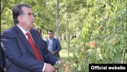 Tajik President Emomali Rahmon was the only candidate who was said to have collected enough signatures to run in the election, which is just a month away.