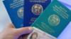 Жети миң паспорттун ыры менен чыры