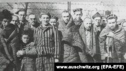 ПОЛСКА - Фотографија од музејот во Аушвиц, која ги прикажува затворениците во концентрациониот логор Аушвиц-Биркенау по ослободувањето логорот во 1945 година