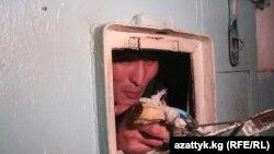 Кыргызстанда кыйнолор негизинен тергөө абактары менен түрмөлөрдө болоору айтылып келет.