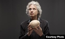 """Steven Pinker: """"By and large, in terms of culture, in terms of technology, the ideas are flowing from West to East."""""""