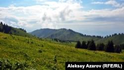 Алматы маңындағы Көкжайлау көрінісі.