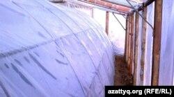әулетхан Шойтанов жасаған жылыжайдың сыртқы және ішкі қабатының арасындағы кеңістік.