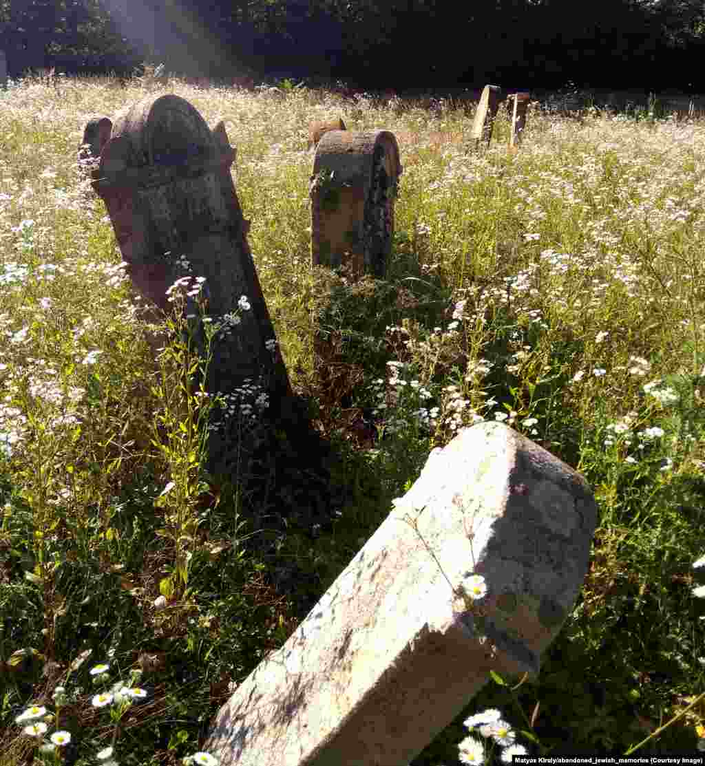 Abandoned graves in a village of rural Hungary. By 1945, after the Nazis' attempt to exterminate them, Europe's Jewish population had plunged to 3.8 million, and many small Jewish communities throughout the continent were completely wiped out.