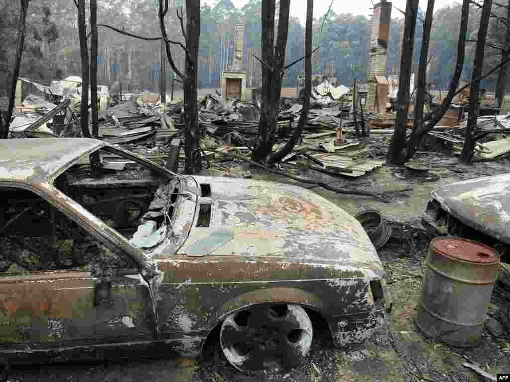 По меньшей мере 181 человек погиб в Австралии в результате лесных пожаров