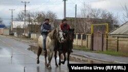 Moldova, Varnita