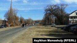 Село Койлык Саркандского района Алматинской области. 29 нояборя 2013 года.