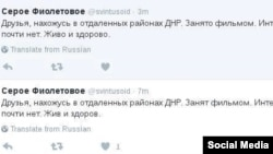 Two tweets from the account of Seroye Fioletovoye that use a different personal pronoun to refer to the missing LGBT activist.