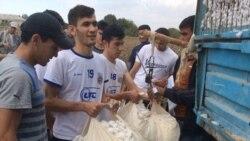 Göyçay icra hakimiyyətindən: 'Kim istəyir, könüllü gəlsin, pambığını yığsın, pulunu alsın'